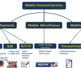 Digital Financial Services